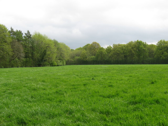 Wolverhampton Conservatives vote against motion to protect Green Belt  in Wolverhampton